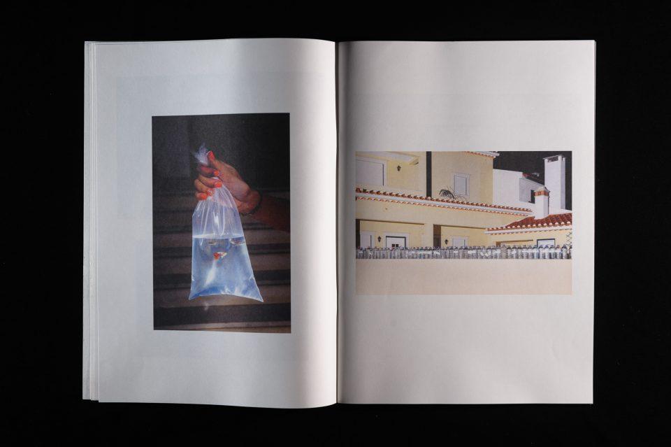 sope-livro-torres-novas-viagens-na-minha-terra-nelson-d-aires-05